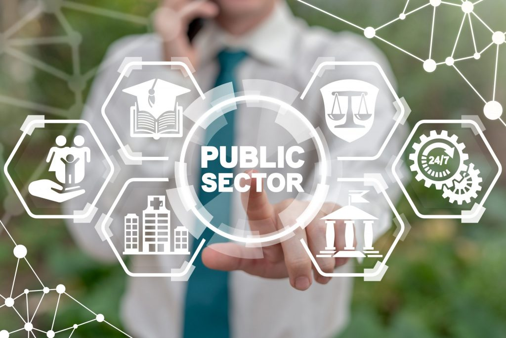 Public sector cyber security concept.